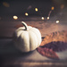 Just a Little Pumpkin