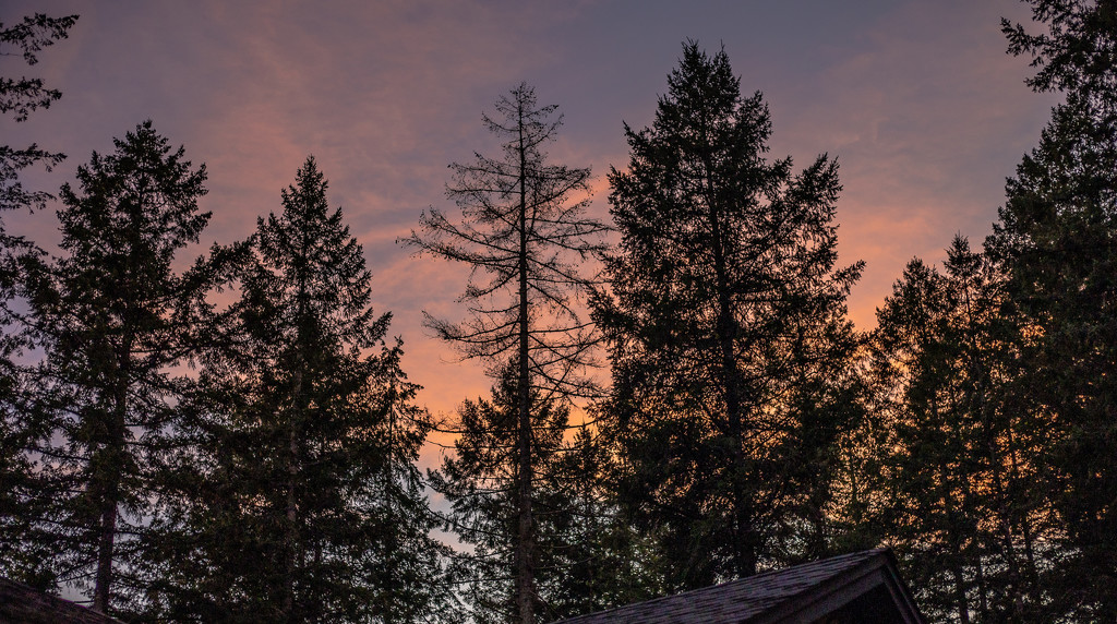 Hometown Sunset 1 by vickiem