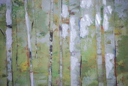 29th Oct 2020 - trees in abstract