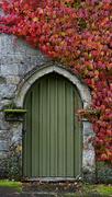 29th Oct 2020 - 1029 - The door to autumn
