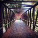 Raymore Park Bridge
