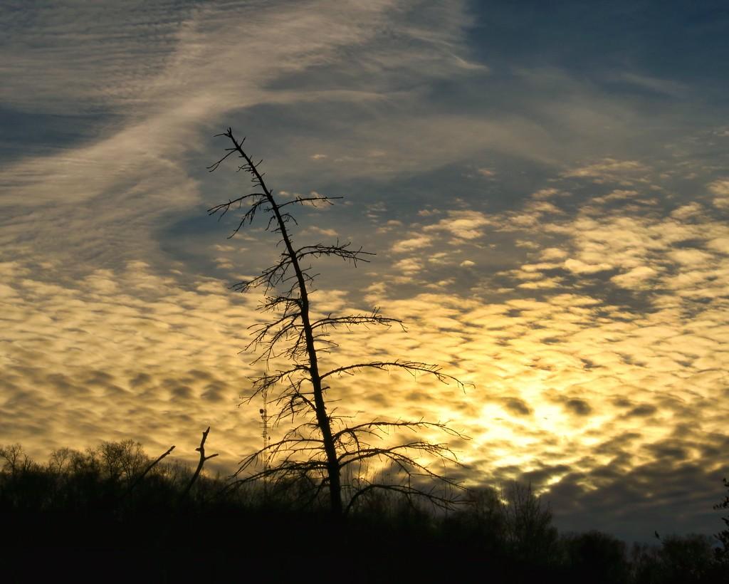 Clouds by rwaterhouse