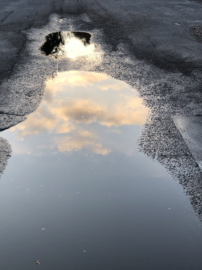 Rain puddle reflection by congaree