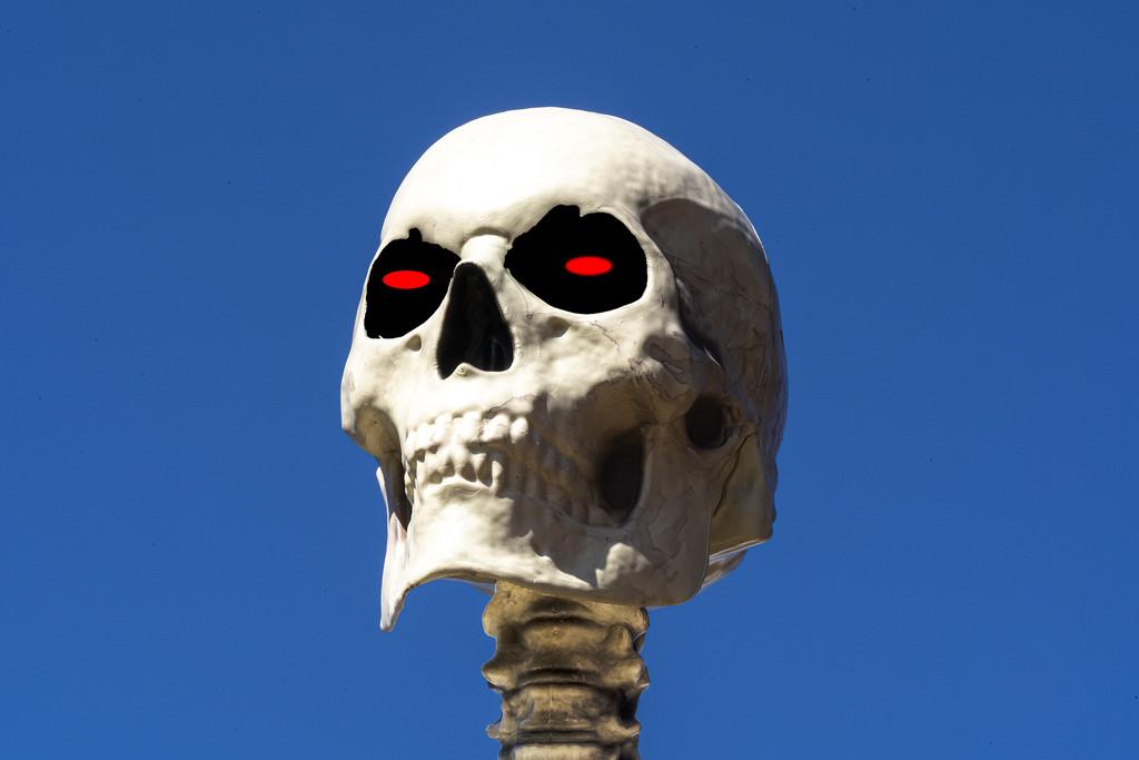 Scary Skeleton by k9photo