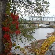 30th Oct 2020 - Riverside Trail