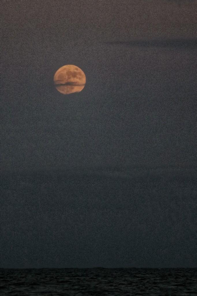 October moon  by joesweet