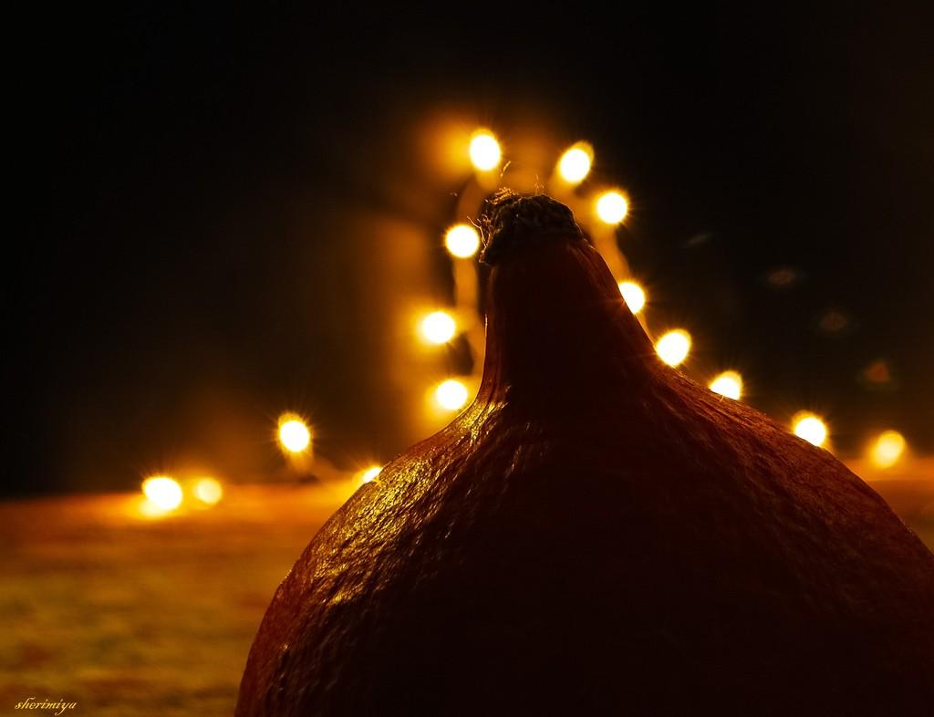 Pumpkin by sherimiya