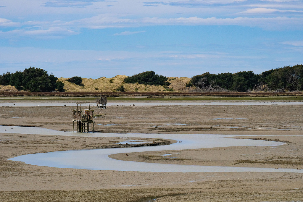 Low tide by maureenpp