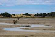 31st Oct 2020 - Low tide