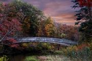 31st Oct 2020 - Bridge At Sunset