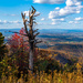 fall colors mountain-