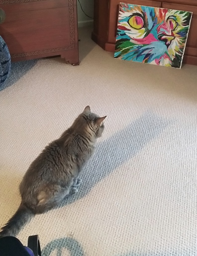 My 94 year old neighbours cat sits & stares at the numbers painting she did.  Never sure if its a real cat or not by 777margo