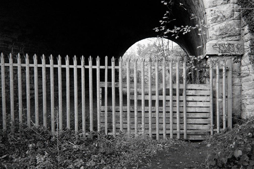 Fence repairs by allsop