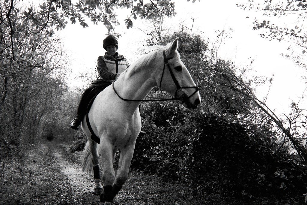 Riding the White Horse 01 by allsop