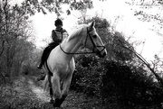 31st Oct 2020 - Riding the White Horse 01