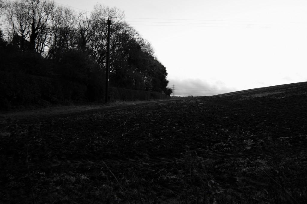 Landscape by allsop