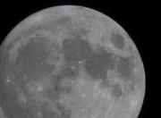 31st Oct 2020 - blue moon
