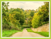 31st Oct 2020 - Country Road
