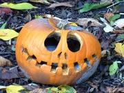 31st Oct 2020 - Pumpkin