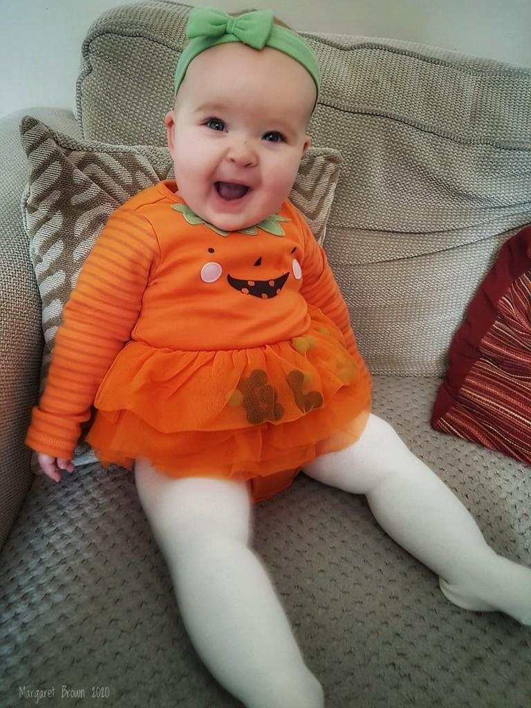 Our very own Pumpkin!! by craftymeg