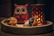 31st Oct 2020 - Mr. Owl