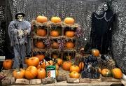 31st Oct 2020 -  Happy Halloween Everyone