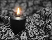 30th Oct 2020 - Flame  in the Dark