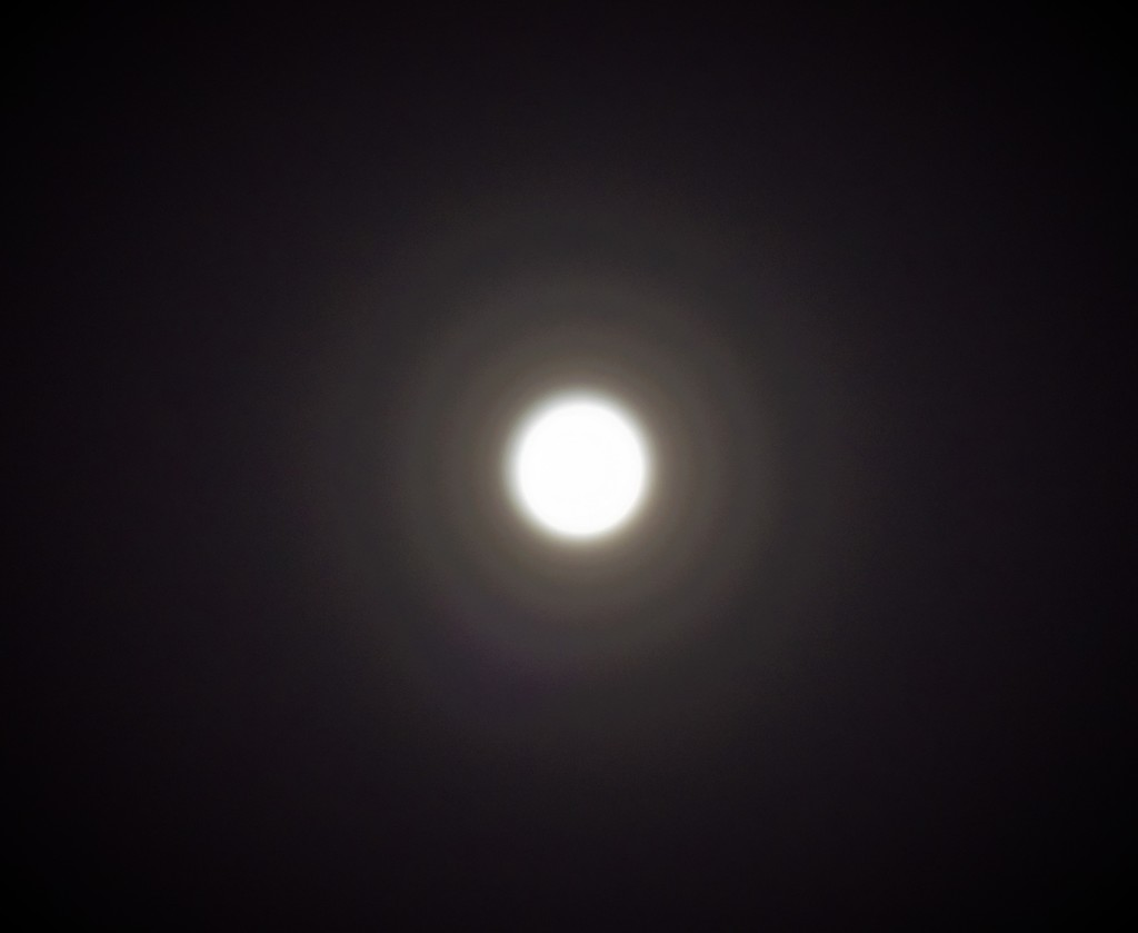 moon with halo. by beefy2