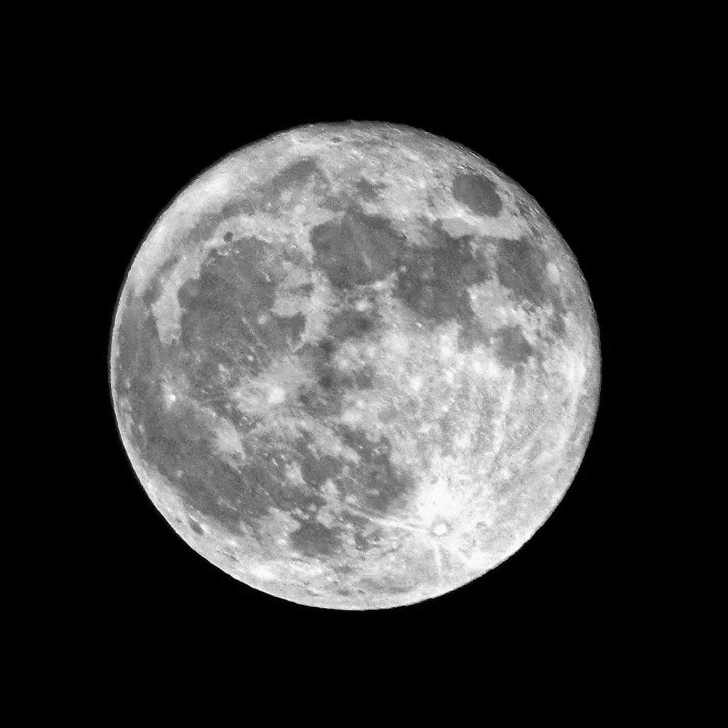 Halloween Moon by milaniet