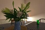1st Nov 2020 - Flowers, light & a glass of G&T