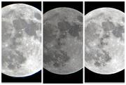 1st Nov 2020 - 10 31 2020 Full moon