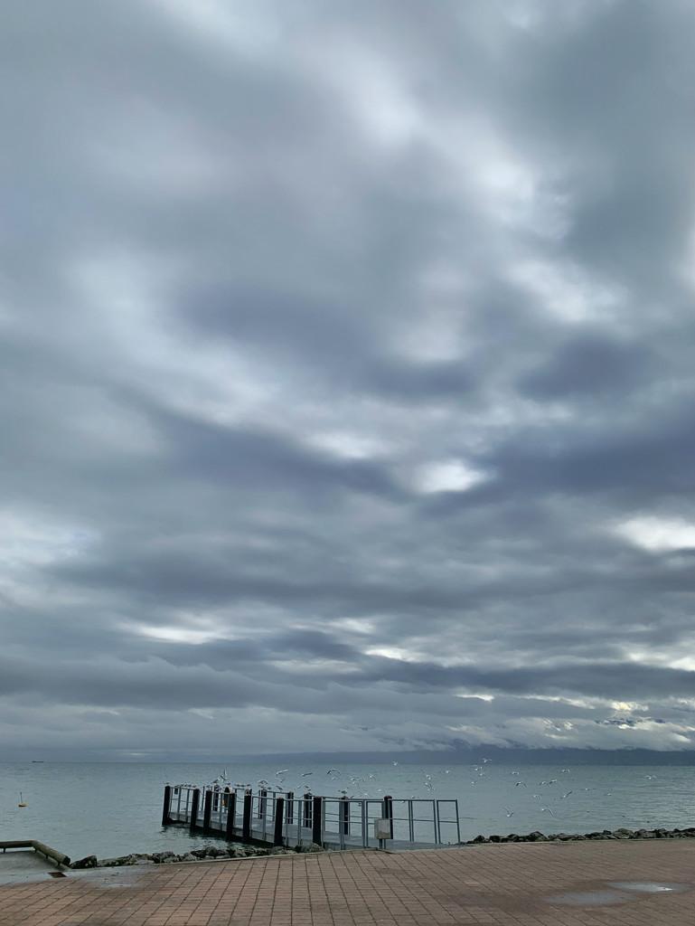 Grey sky.  by cocobella