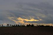 1st Nov 2020 - Sundown.