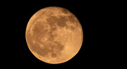 1st Nov 2020 - Got the Moon Tonight!