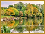 2nd Nov 2020 - Autumn Colours And Reflections