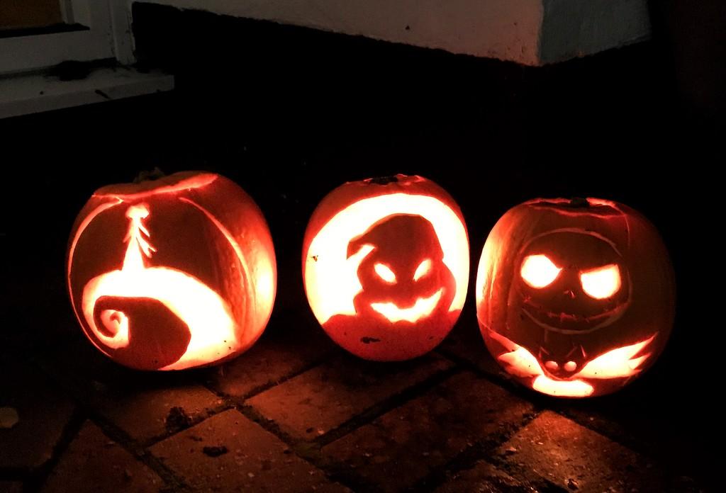 Pumpkins  by goosemanning