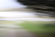 2nd Nov 2020 - The Bottom Of The Drive   (ICM)
