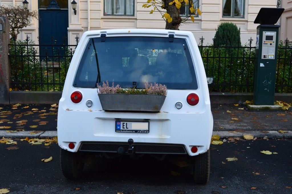 The greenest car by didi