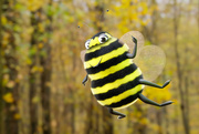 2nd Nov 2020 - Bee Happy