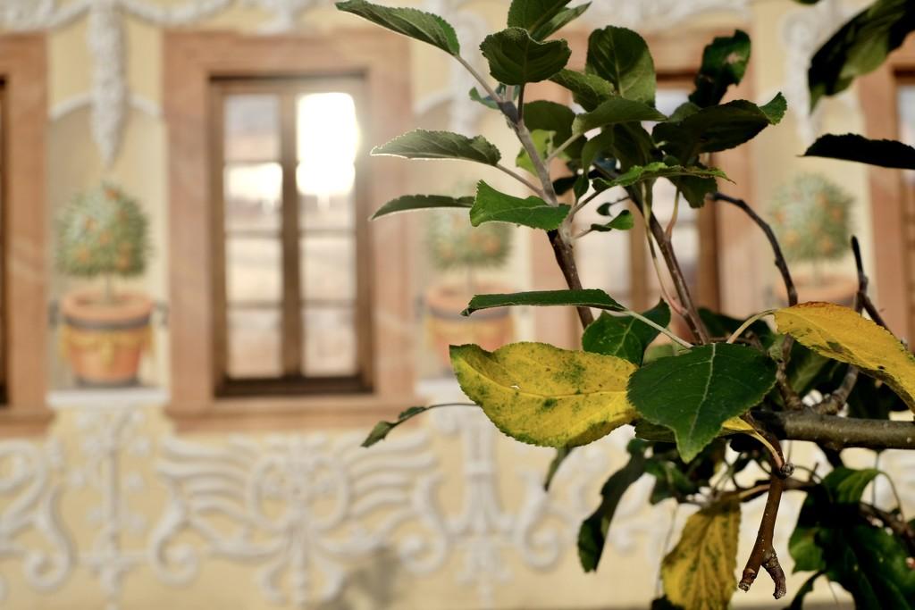 Autumn house by vincent24