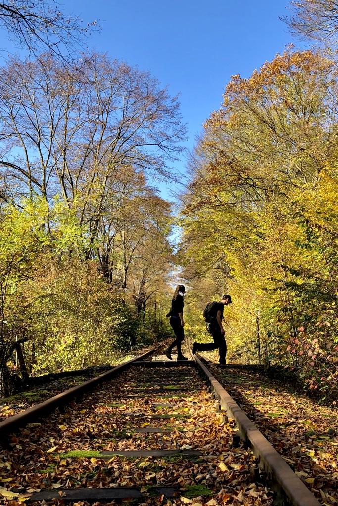 Autumn railtrack by vincent24