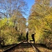 Autumn railtrack