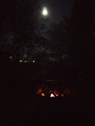 31st Oct 2020 - Full Moon Halloween