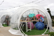 3rd Nov 2020 - Brolly girls in a bubble drinking bubbles!