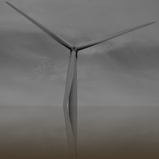 3rd Nov 2020 - WINDMILL OF YOUR MIND