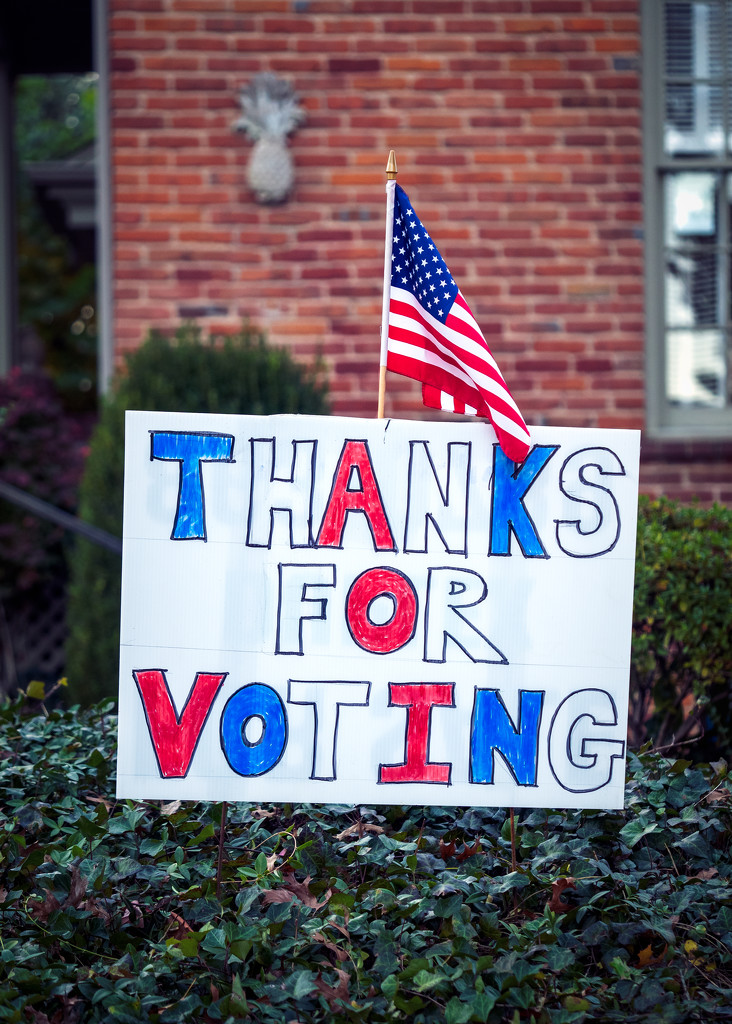 Thanks for Voting, America by rosiekerr
