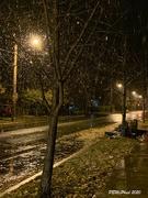 2nd Nov 2020 - Wet Snow