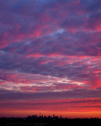3rd Nov 2020 - the painted sky