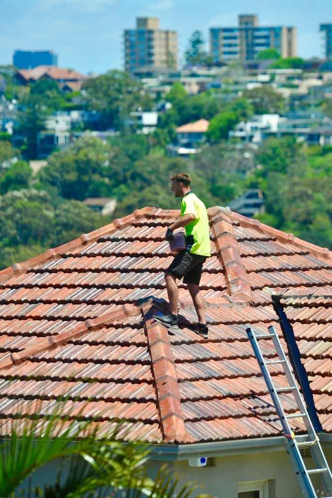 The Roofer. There are a few OH&S* issues here! by johnfalconer