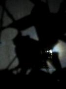 4th Nov 2020 - Shadow